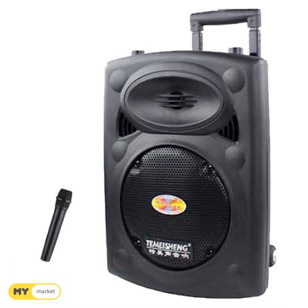 კარაოკე დინამიკი Temeishen A12 Bluetooth Speaker 1 microphon