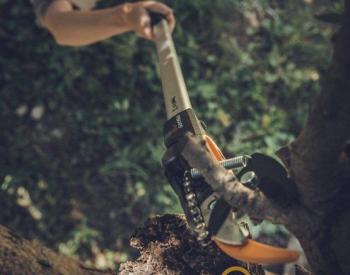 PowerGear Tree Pruner UPX82