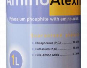 ამინოალექსინი