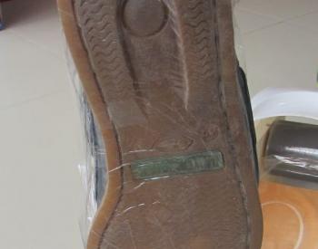 ბახილების აპარატი baxilebis aparati ბახილი baxili
