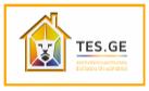 TES.GE