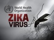 ოლიმპიური თამაშები და ვირუსი ზიკა