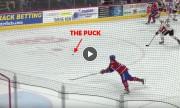 წარმოუდგენელი სეივი AHL-დან (ვიდეო)
